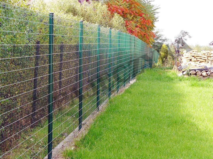 Забор дачного участка своими руками фото 96