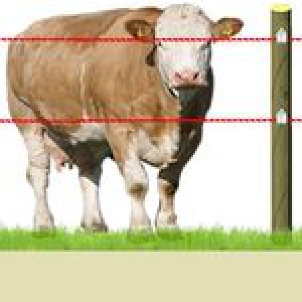 Электрозабор для скота